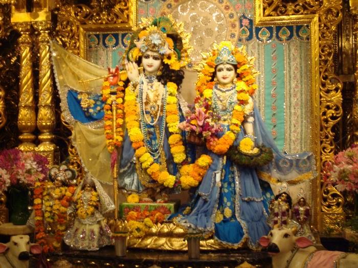 Greeting their Lordships Sri Sri Radha Vrndabancandra