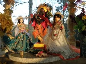Their Lordships Sri Sri Radha Gopinath