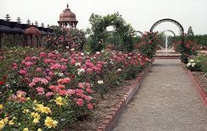 New Vrindaban ISKCON Prabhupada Palace rose garden