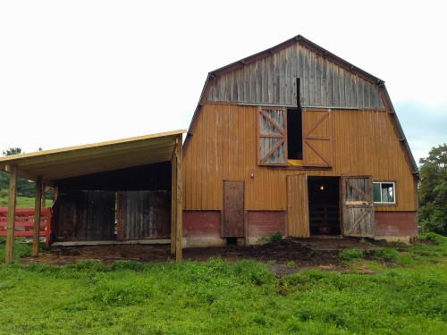 New Vrindaban ECO-Vrindaban Temple Cow Barn
