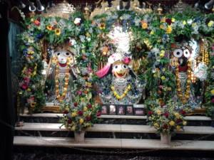 Jagannatha Baladeva Subhadra Krishna Janmastami New Vrindaban 2014