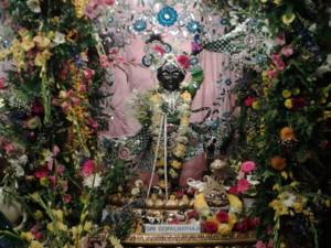 Gopal Nathji Krishna Janmastami New Vrindaban 2014