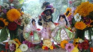 Sri Sri Radha Gopinatha at Govardhan Hill in NV