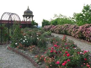 Prabhupada's Palace of Gold New Vrindaban Rose Garden