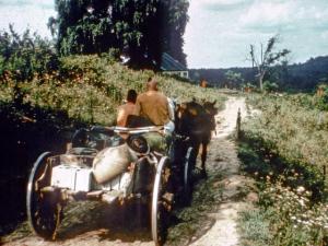 New Vrindaban Original Farmhouse horse drawn cart