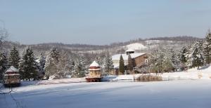New Vrindaban winter scene