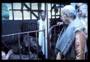 New Vrindaban Prabhupada Bahulaban 1976