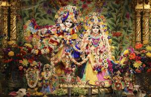 Janmastami 2015 Radha Vrindaban Chandra