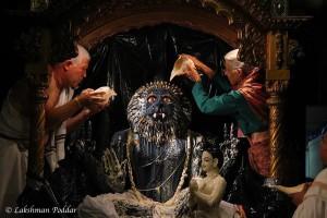 Senior Prabhupada disciples, Soma das and Jaysri dasi, bathe Nrsimhadev and Prahlada Maharaj on Nrsimha Caturmasi 2015.