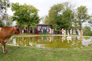 Varsana Swami parikrama Radha Kunda Radhastami 2016 ISKCON New Vrindaban ECO-Vrindaban Appreciation