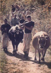 ISKCON New Vrindaban Kaliya Cow Gargarsi 1970s